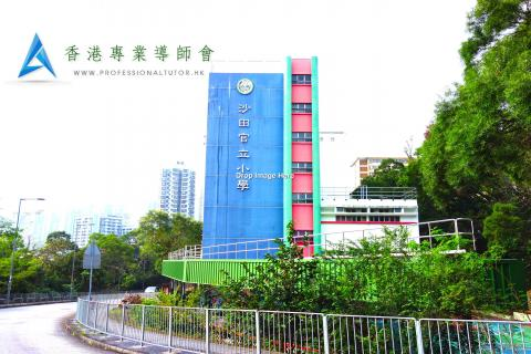沙田官立小學, Shatin Government Primary School, 香港專業導師會, ProfessionalTutor.hk, 上門補習, 名校巡禮